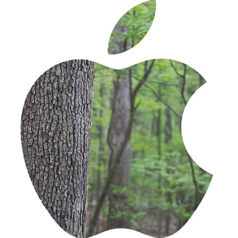 Apple Makes Big Moves Towards Environmental Protection in