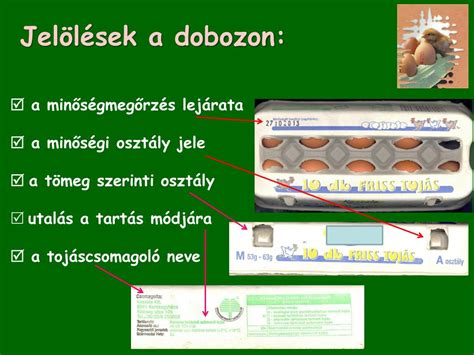 PPT - A tojás… PowerPoint Presentation, free download - ID